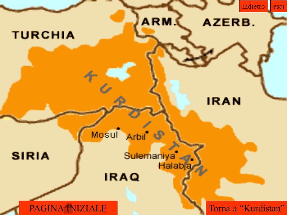 PAGINA INIZIALE indietroesci Torna a Kurdistan