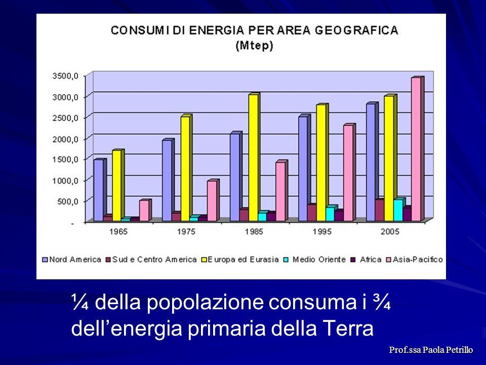 ¼ della popolazione consuma i ¾ dellenergia primaria della Terra Prof.ssa Paola Petrillo