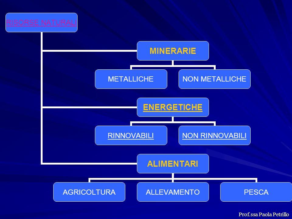 RISORSE NATURALI MINERARIE METALLICHE NON METALLICHE ENERGETICHE RINNOVABILI NON RINNOVABILI ALIMENTARI AGRICOLTURAALLEVAMENTOPESCA Prof.ssa Paola Pet