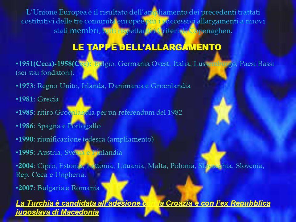 CRITERI DI COPENAGHEN REGOLAMENTAZIONE DELLALLARGAMENTO DELLUNIONE EUROPEA Nel 1993 durante il Consiglio europeo di Copenaghen vennero definiti i parametri che uno Stato candidato alladesione allUnione Europea deve rispettare: i criteri di Copenaghen.