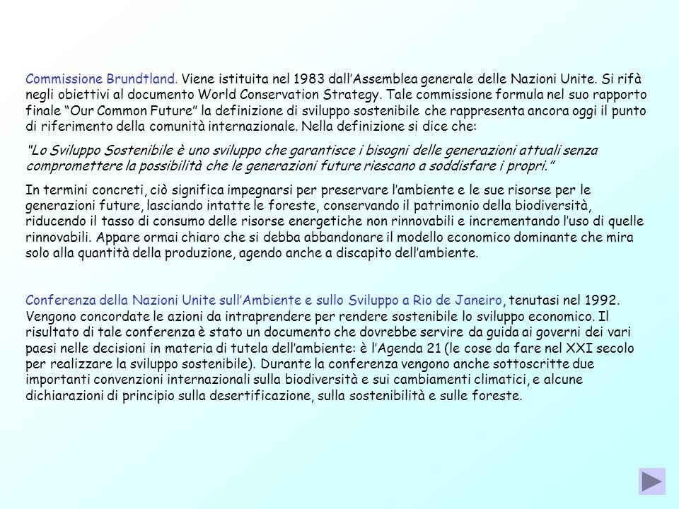 Commissione Brundtland. Viene istituita nel 1983 dallAssemblea generale delle Nazioni Unite. Si rifà negli obiettivi al documento World Conservation S