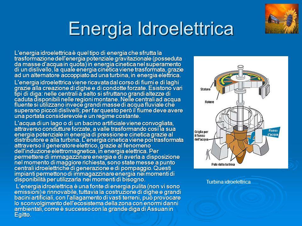 Fonti di Energia da Biomassa e Biogas Le fonti di energia da biomassa sono costituite dalle sostanze di origine animale e vegetale, non fossili, che possono essere usate come combustibili per la produzione di energia.