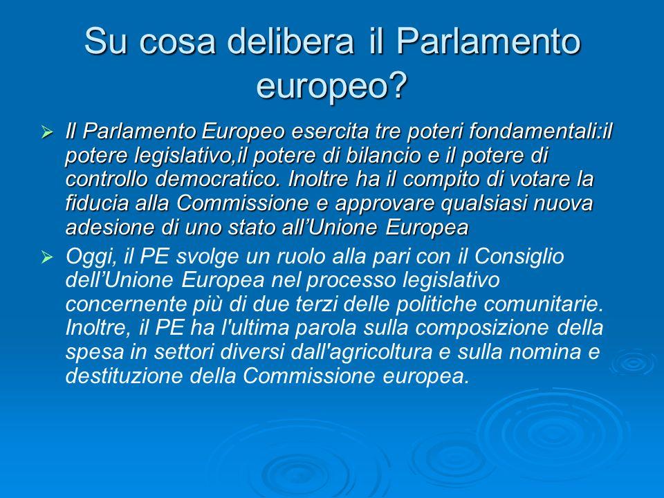 Su cosa delibera il Parlamento europeo.