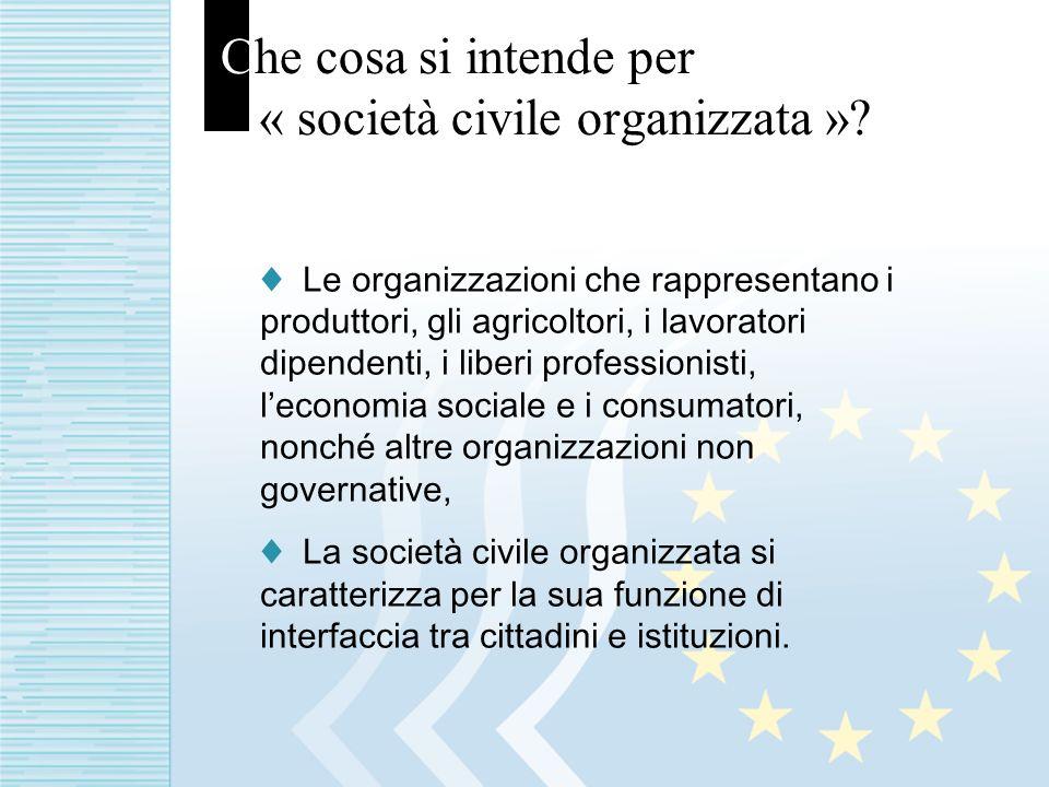 Che cosa si intende per « società civile organizzata ».
