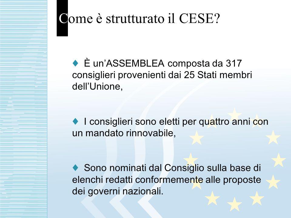 Come è strutturato il CESE.