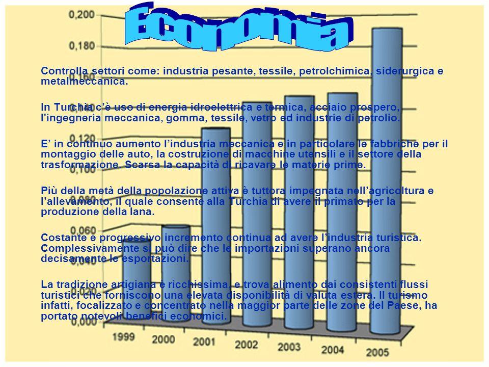 Controlla settori come: industria pesante, tessile, petrolchimica, siderurgica e metalmeccanica. In Turchia cè uso di energia idroelettrica e termica,