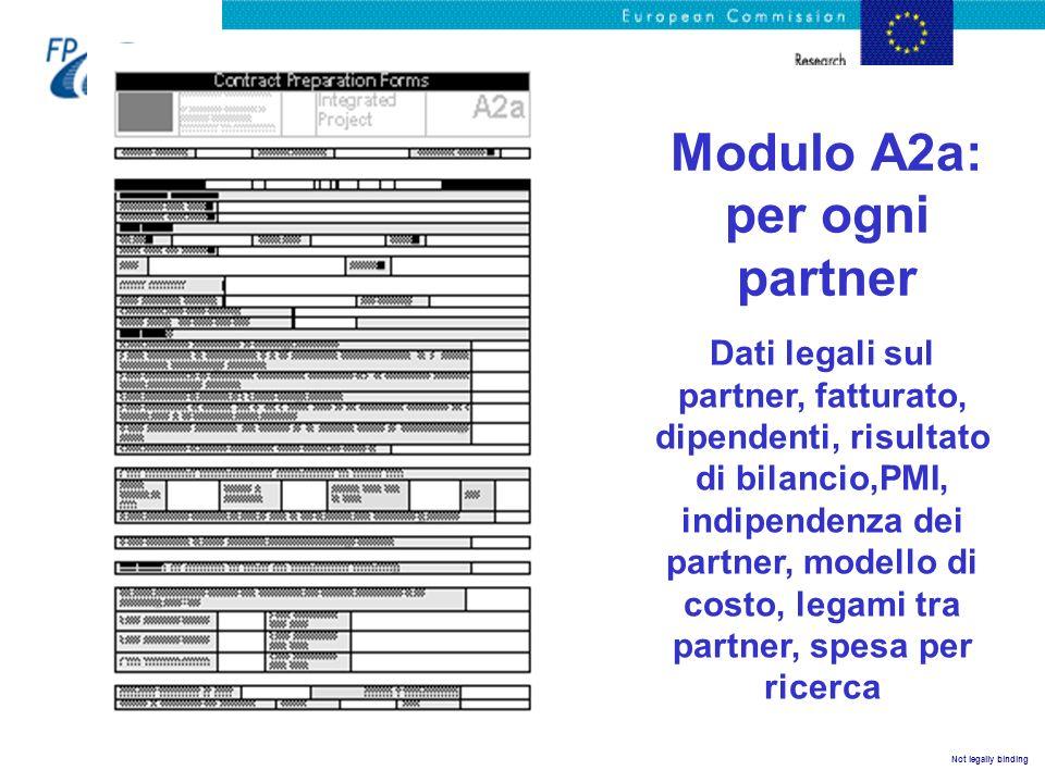 Not legally binding Modulo A2a: per ogni partner Dati legali sul partner, fatturato, dipendenti, risultato di bilancio,PMI, indipendenza dei partner,