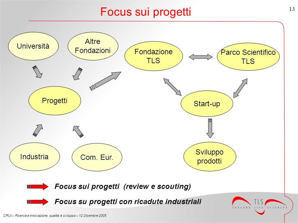 CRUI – Ricerca e innovazione, qualità e sviluppo – 12 Dicembre 2005 13 Focus sui progetti Fondazione TLS Parco Scientifico TLS Start-up Progetti Università Industria Com.