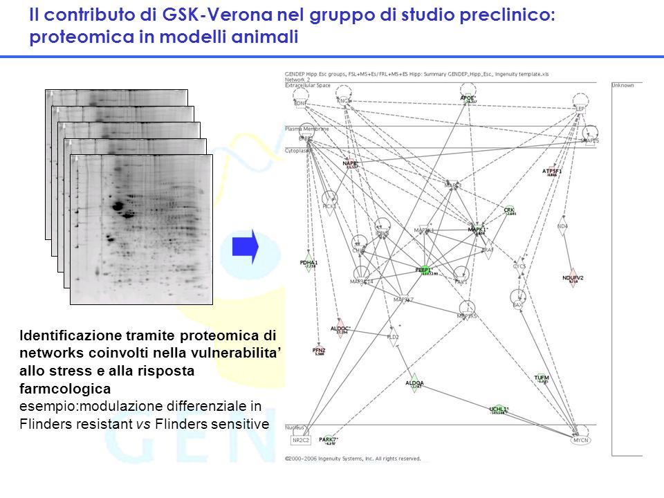 14 Il contributo di GSK-Verona nel gruppo di studio preclinico: proteomica in modelli animali Identificazione tramite proteomica di networks coinvolti nella vulnerabilita allo stress e alla risposta farmcologica esempio:modulazione differenziale in Flinders resistant vs Flinders sensitive