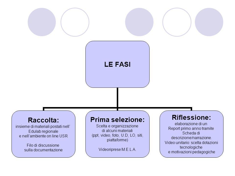LE FASI Raccolta: insieme di materiali postati nell Edulab regionale e nellambiente on line USR Filo di discussione sulla documentazione Prima selezio