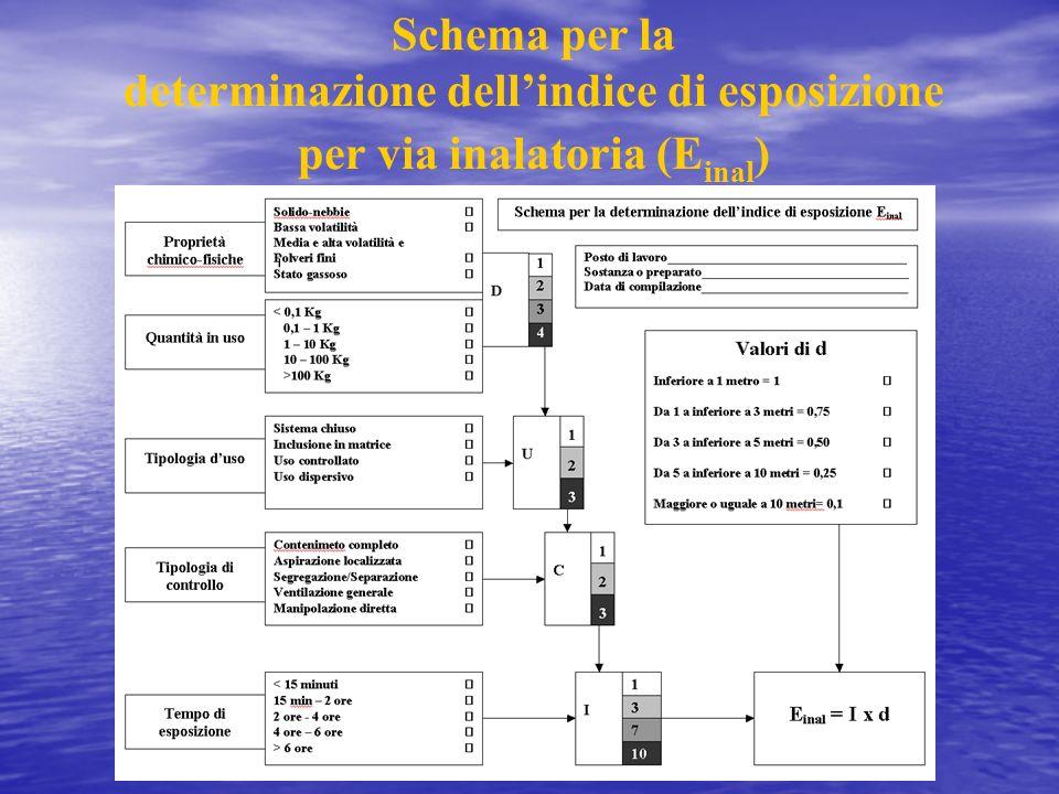 Schema per la determinazione dellindice di esposizione per via inalatoria (E inal )