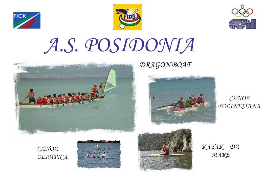 A.S. POSIDONIA CANOA POLINESIANA DRAGON BOAT KAYAK DA MARE CANOA OLIMPICA