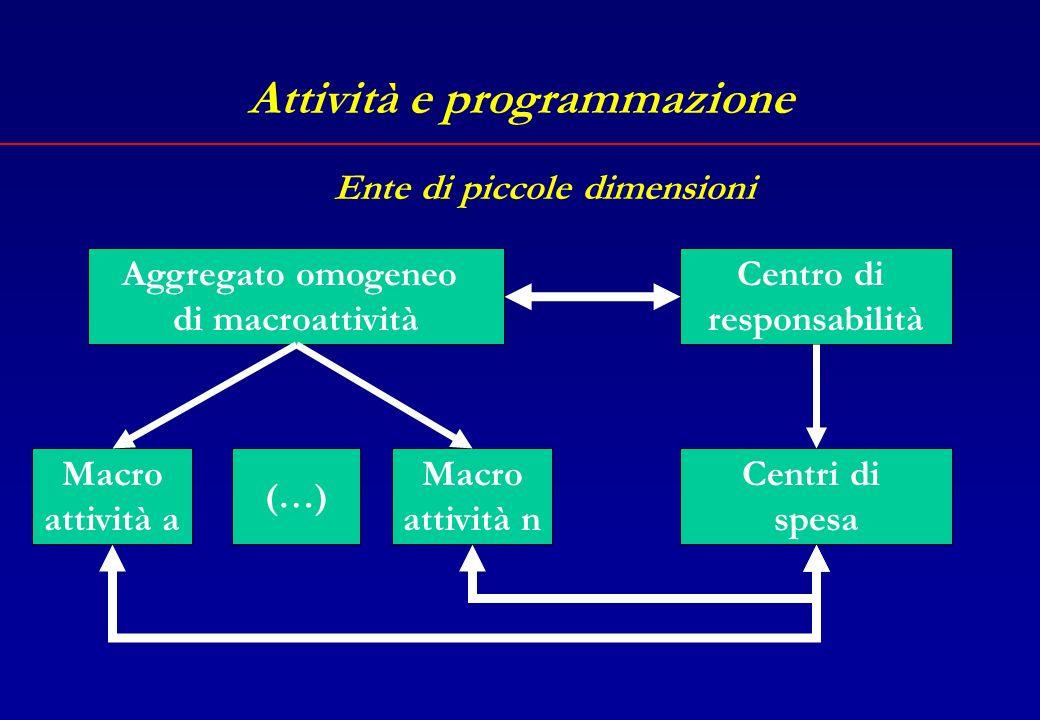 Attività e programmazione Macroattività Attività aAttività n Centri di spesa Centro di responsabilità (…) Ente di grandi dimensioni