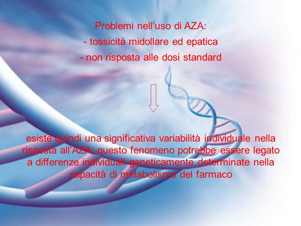 Problemi nelluso di AZA: - tossicità midollare ed epatica - non risposta alle dosi standard esiste quindi una significativa variabilità individuale ne