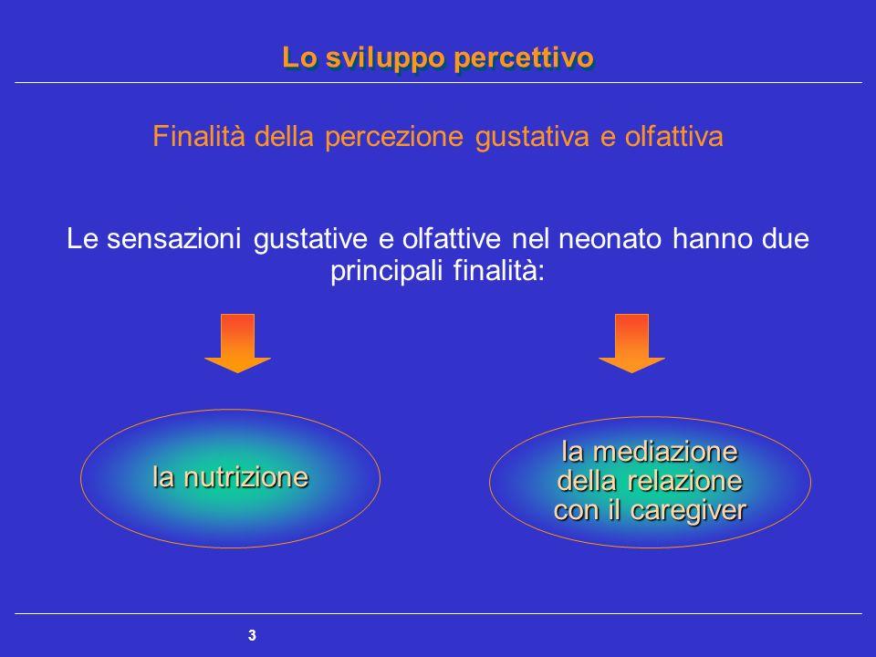 Lo sviluppo percettivo 3 Finalità della percezione gustativa e olfattiva Le sensazioni gustative e olfattive nel neonato hanno due principali finalità