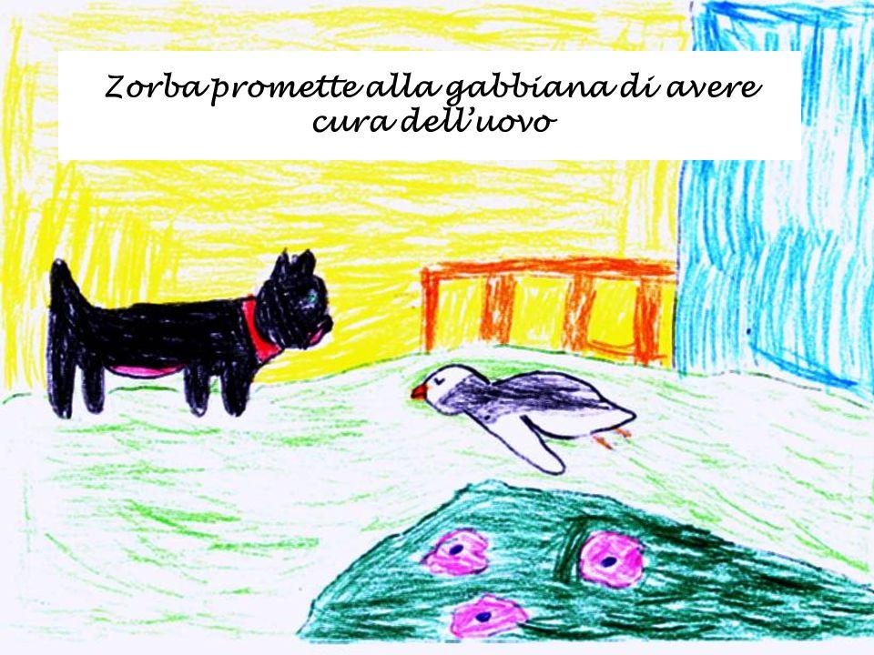 Zorba promette alla gabbiana di avere cura delluovo