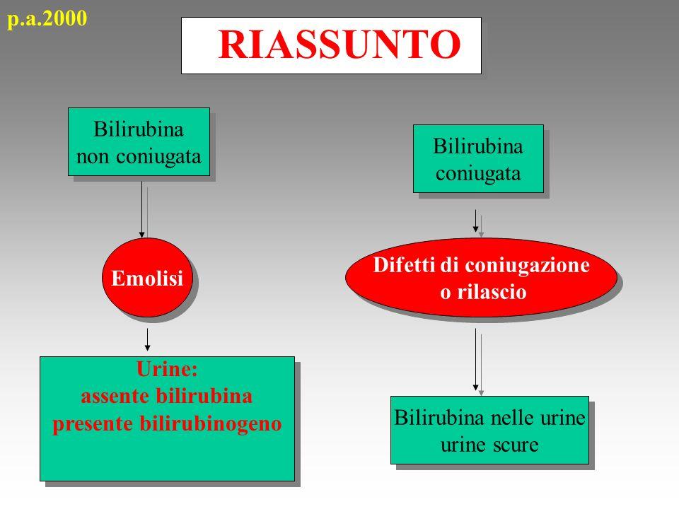 RIASSUNTO Bilirubina non coniugata Bilirubina non coniugata Emolisi Urine: assente bilirubina presente bilirubinogeno Bilirubina coniugata Bilirubina