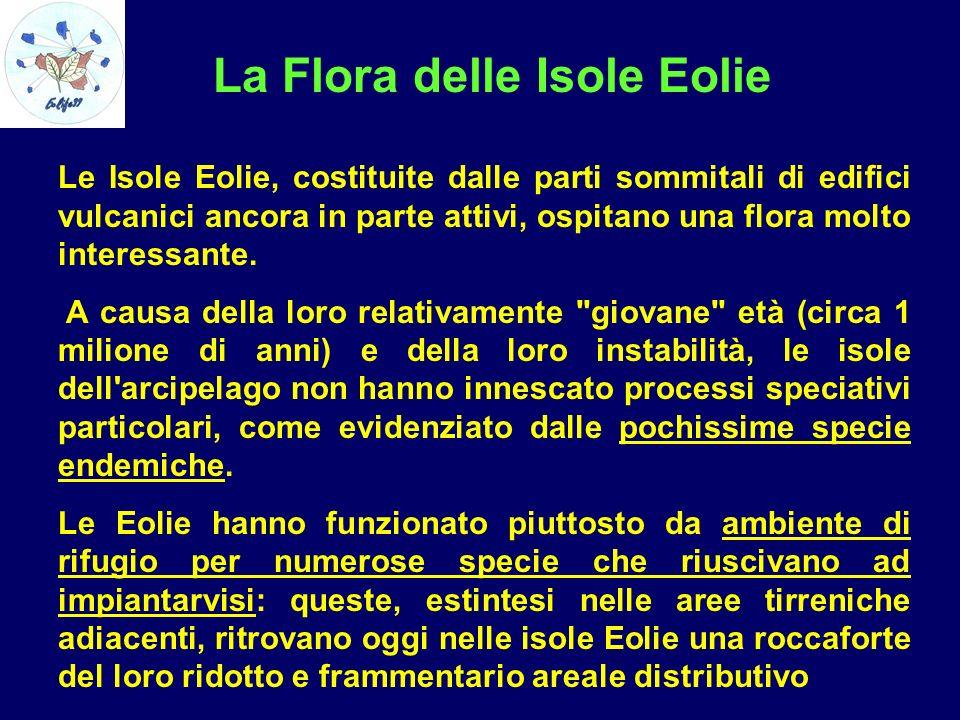 La Flora delle Isole Eolie Le Isole Eolie, costituite dalle parti sommitali di edifici vulcanici ancora in parte attivi, ospitano una flora molto inte