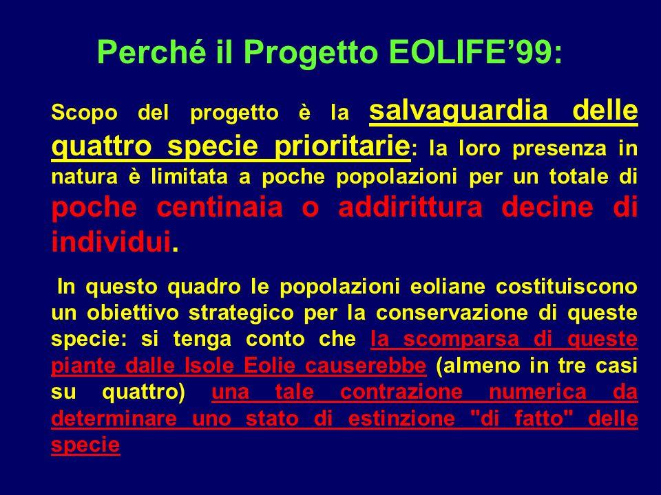 Perché il Progetto EOLIFE99: Scopo del progetto è la salvaguardia delle quattro specie prioritarie : la loro presenza in natura è limitata a poche pop