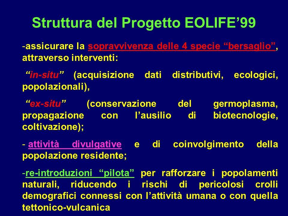 Struttura del Progetto EOLIFE99 -assicurare la sopravvivenza delle 4 specie bersaglio, attraverso interventi: in-situ (acquisizione dati distributivi,