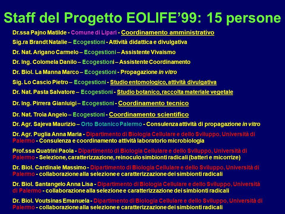 Staff del Progetto EOLIFE99: 15 persone Dr. Agr. Sajeva Maurizio – Orto Botanico Palermo - Consulenza attività di propagazione in vitro Dr. Agr. Pugli