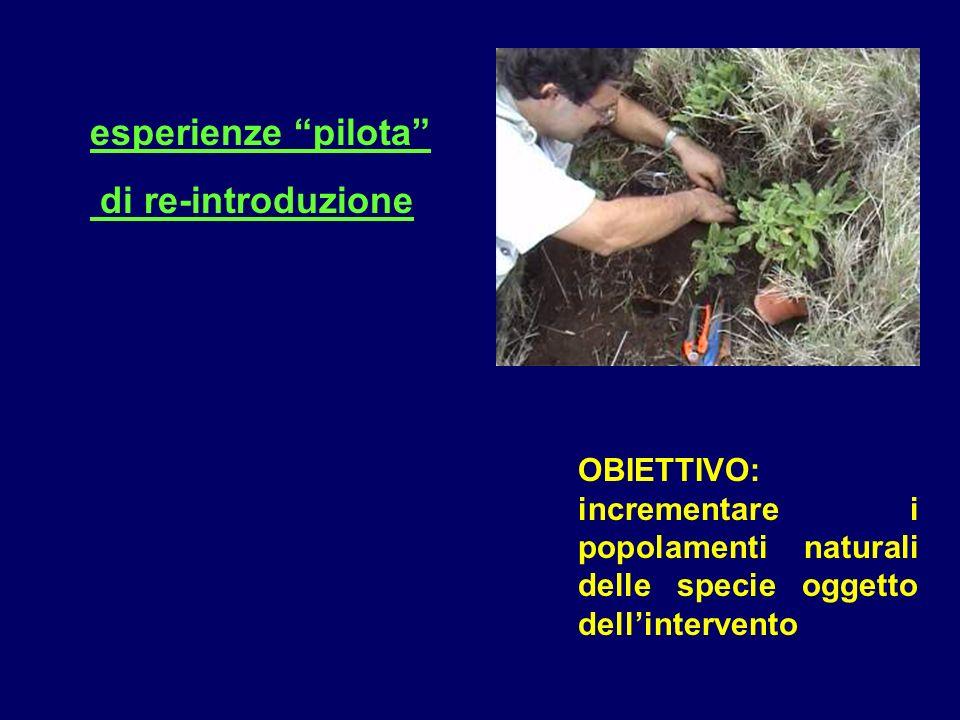 esperienze pilota di re-introduzione OBIETTIVO: incrementare i popolamenti naturali delle specie oggetto dellintervento