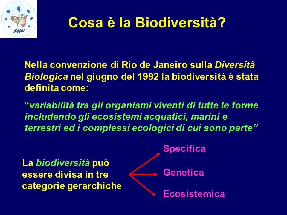 Cosa è la Biodiversità? Nella convenzione di Rio de Janeiro sulla Diversità Biologica nel giugno del 1992 la biodiversità è stata definita come: varia