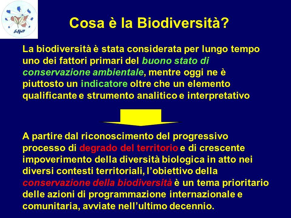 Cosa è la Biodiversità? La biodiversità è stata considerata per lungo tempo uno dei fattori primari del buono stato di conservazione ambientale, mentr