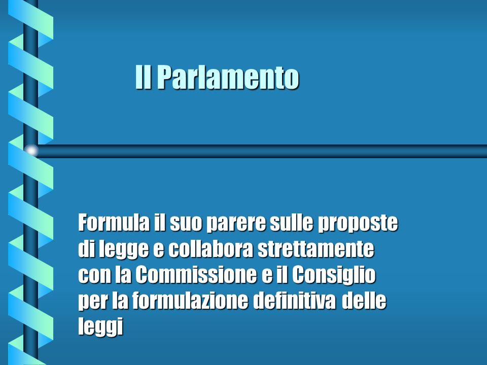 Il Parlamento Formula il suo parere sulle proposte di legge e collabora strettamente con la Commissione e il Consiglio per la formulazione definitiva