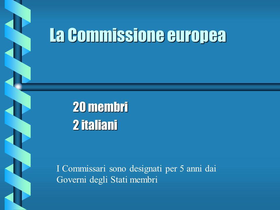 Funzioni della Commissione b Vigila sulla corretta applicazione dei trattati b Nel processo legislativo dellUnione ha il potere di iniziative b Definisce il modo in cui raggiungere gli obiettivi comuni