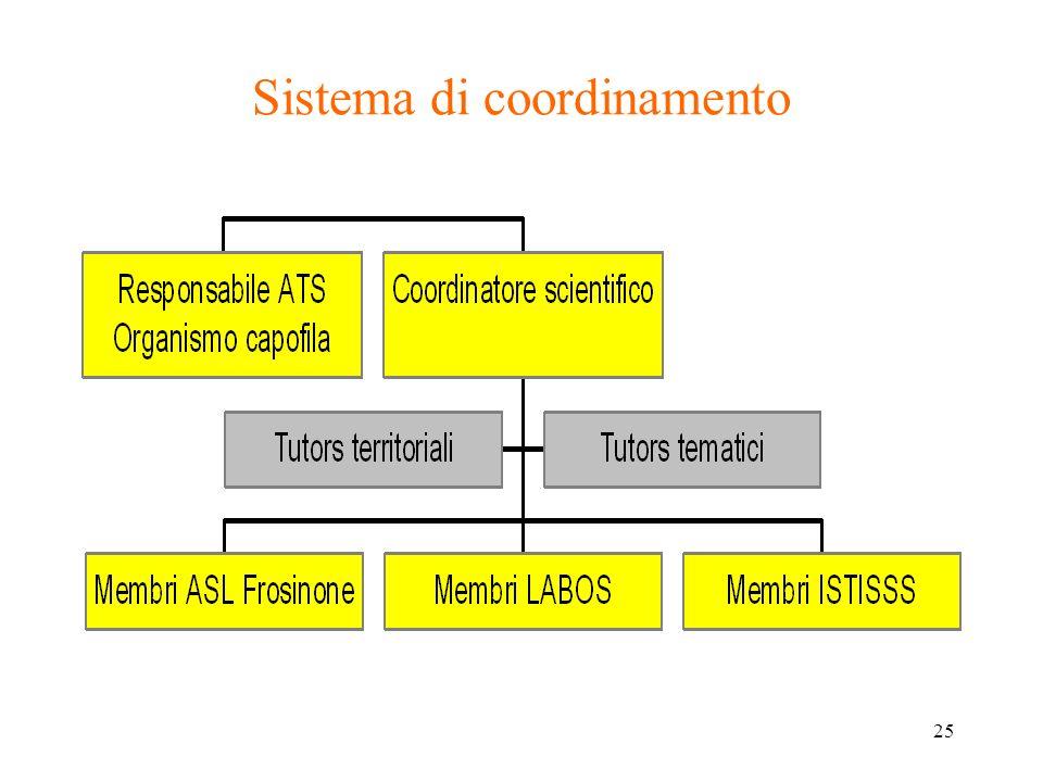 25 Sistema di coordinamento