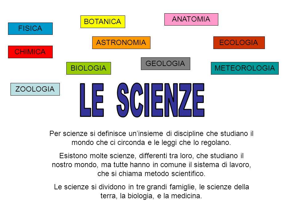 Scienze della terra : 1.Geologia che studia la terra, le rocce, i minerali, i vulcani etc..