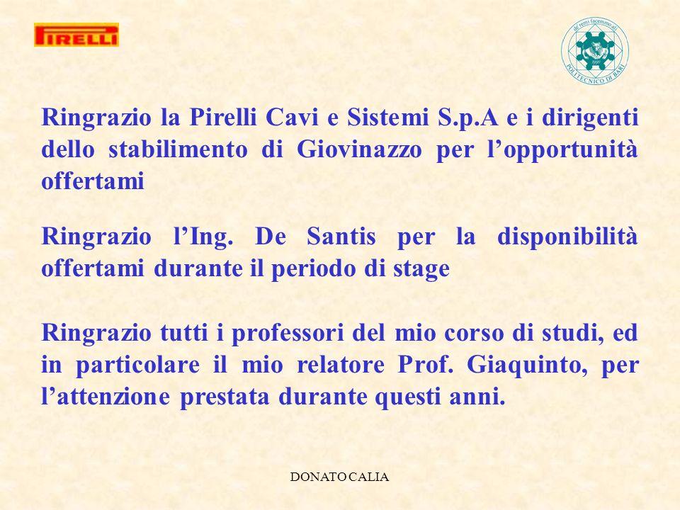 DONATO CALIA Ringrazio la Pirelli Cavi e Sistemi S.p.A e i dirigenti dello stabilimento di Giovinazzo per lopportunità offertami Ringrazio lIng. De Sa