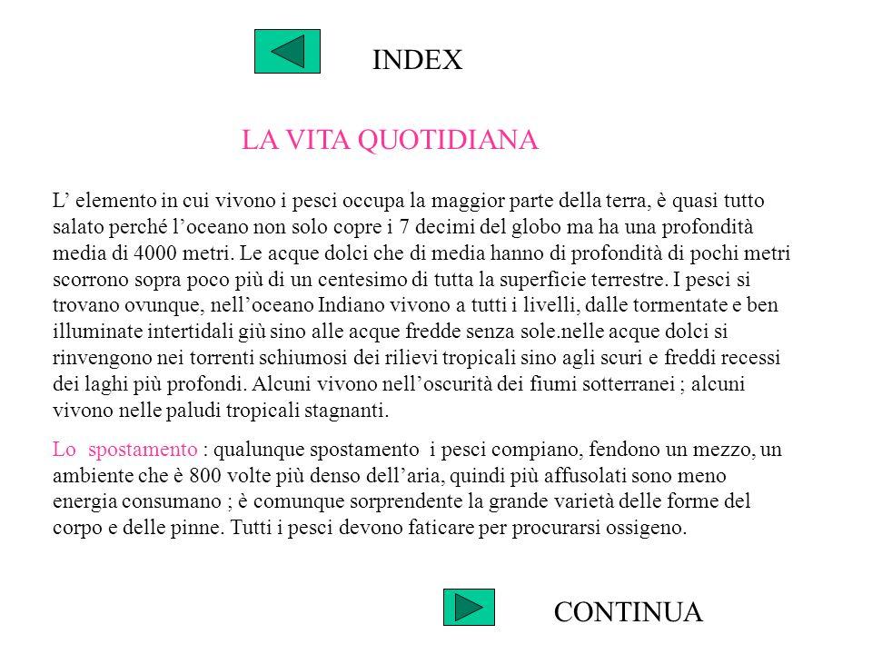 INDEX La vista : sebbene lacqua sia molto spesso meno trasparente dellaria e i pesci hanno una buona vista.