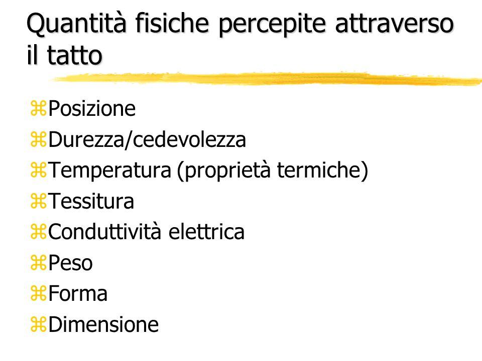Quantità fisiche percepite attraverso il tatto zPosizione zDurezza/cedevolezza zTemperatura (proprietà termiche) zTessitura zConduttività elettrica zP