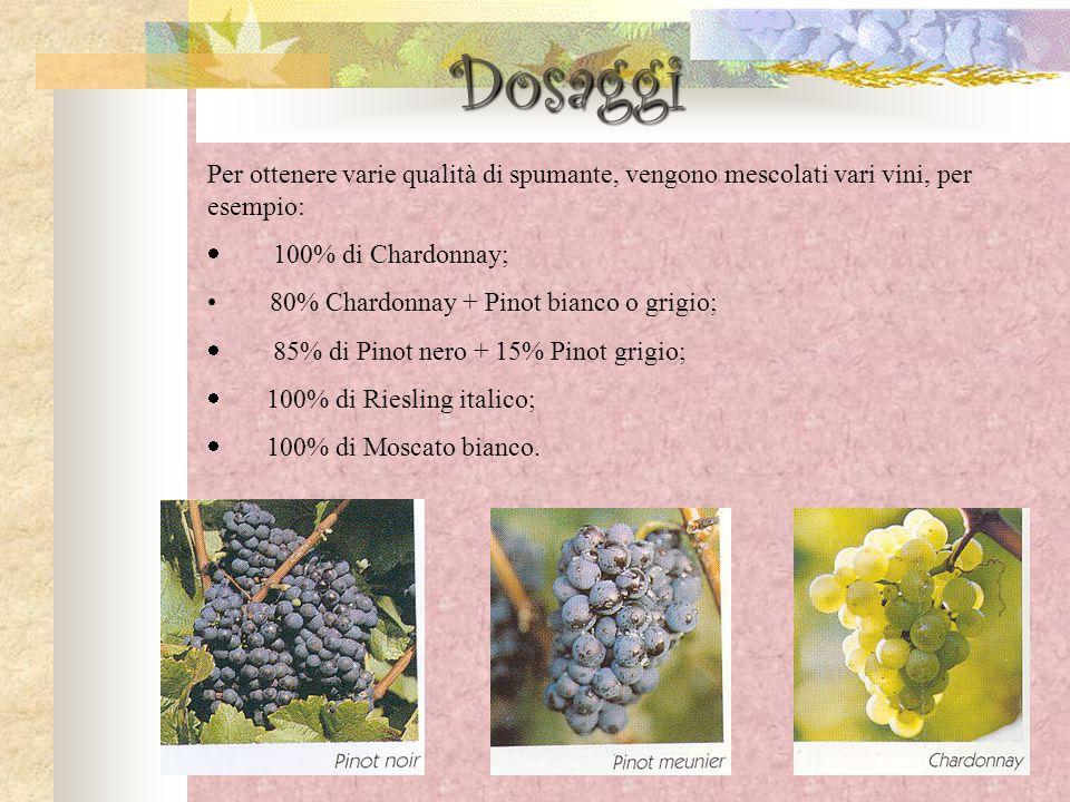 Per ottenere varie qualità di spumante, vengono mescolati vari vini, per esempio: 100% di Chardonnay; 80% Chardonnay + Pinot bianco o grigio; 85% di P