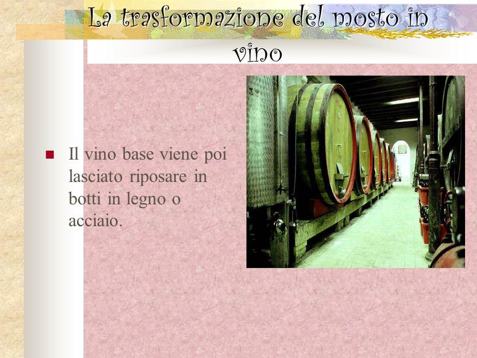 La trasformazione del mosto in vino Il vino base viene poi lasciato riposare in botti in legno o acciaio.