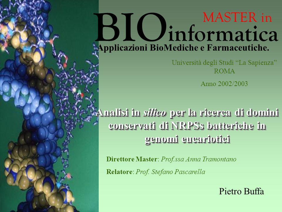 Analisi in silico per la ricerca di domini conservati di NRPSs batteriche in genomi eucariotici Università degli Studi La Sapienza ROMA Anno 2002/2003