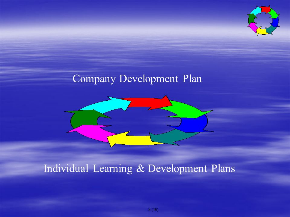 3 (16) Company Development Plan Individual Learning & Development Plans
