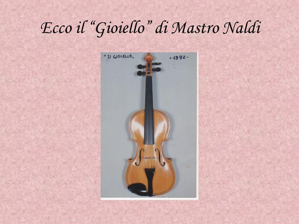 Nessuno mi ha insegnato a costruire violini cominciai a ripararne uno e da allora mi misi a studiare la tecnica dei grandi liutai Abele Naldi, nato da una famiglia di contadini del Polesine, a 9 anni era già a bottega da un falegname.