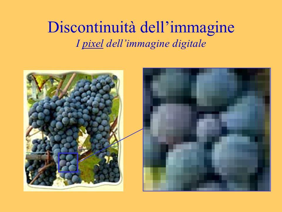 Discontinuità dellimmagine I pixel dellimmagine digitale