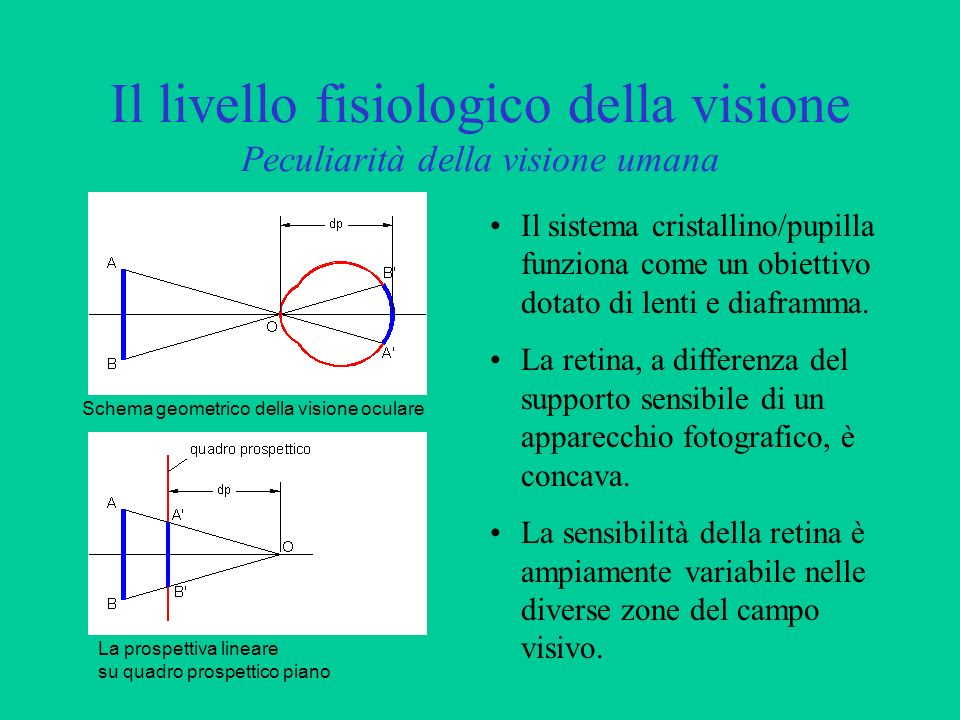 Il livello fisiologico della visione Peculiarità della visione umana Il sistema cristallino/pupilla funziona come un obiettivo dotato di lenti e diafr