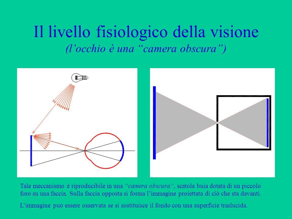Il livello fisiologico della visione (locchio è una camera obscura) La luce emessa da una o più sorgenti viene (parzialmente) riflessa dagli oggetti i