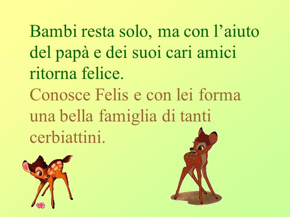 Bambi resta solo, ma con laiuto del papà e dei suoi cari amici ritorna felice. Conosce Felis e con lei forma una bella famiglia di tanti cerbiattini.