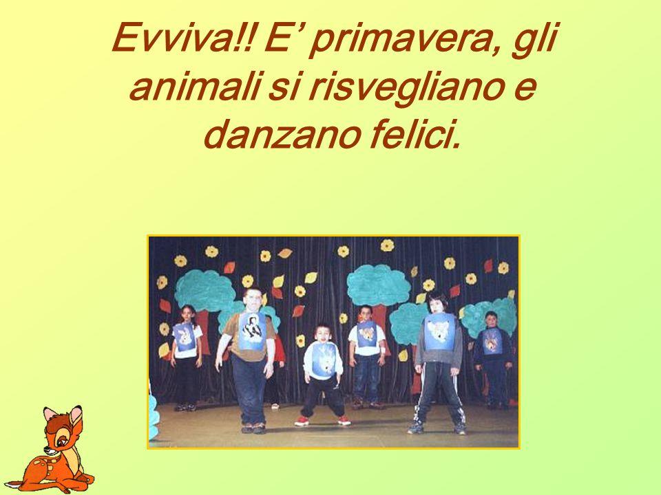 Evviva!! E primavera, gli animali si risvegliano e danzano felici.