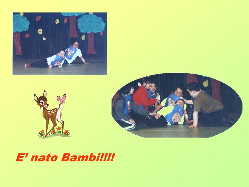 E nato Bambi!!!!