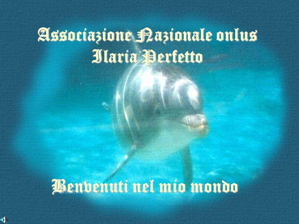Associazione Nazionale onlus Ilaria Perfetto Benvenuti nel mio mondo
