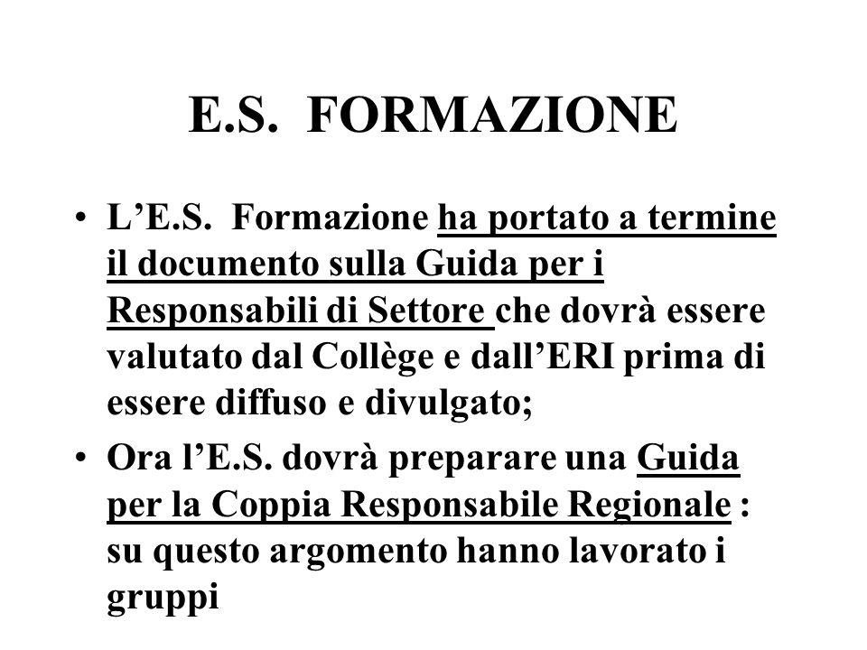E.S. FORMAZIONE LE.S. Formazione ha portato a termine il documento sulla Guida per i Responsabili di Settore che dovrà essere valutato dal Collège e d