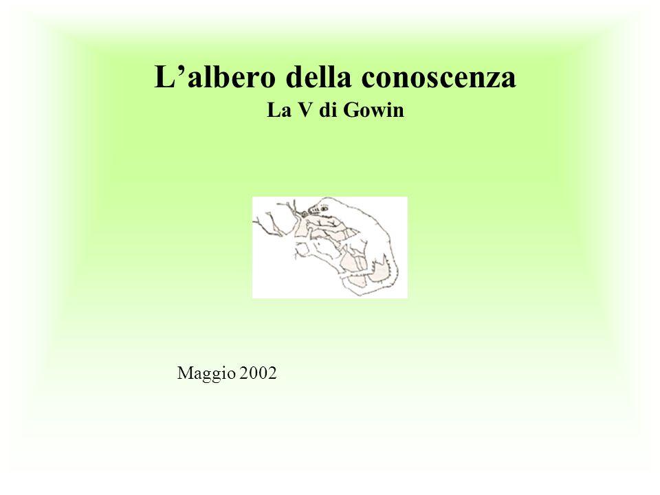 Lalbero della conoscenza La V di Gowin Maggio 2002