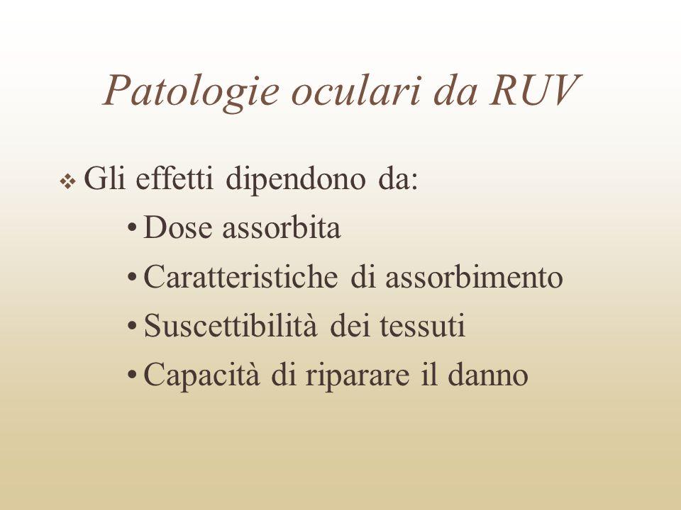 Patologie oculari da RUV Gli effetti dipendono da: Dose assorbita Caratteristiche di assorbimento Suscettibilità dei tessuti Capacità di riparare il d